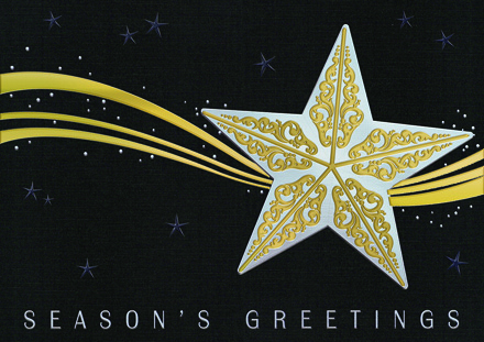 Stardust Holiday Cards
